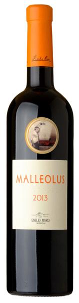 malleolus-2013-diario-de-un-gloton