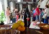 Días de Vino en Mallorca