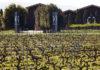 Terras Gauda en Rioja