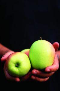 Timbal de manzana