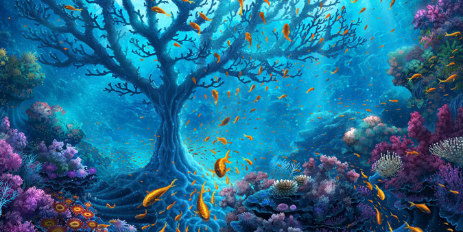 Océanos, peces, platos