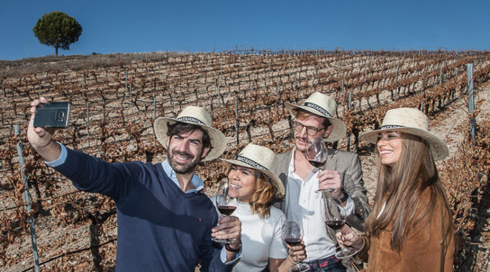 Spain Trough its Wineries