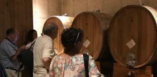 Ruta del Vino de Utiel-Requena